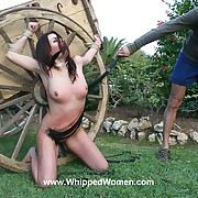 Whipped Women Picture