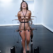 Kristina Rose let\'s her doxy out throughout high voltage lesbo electrosex!