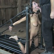 this babe warms his rod up with her face hole in advance of that guy begins to pound her cookie from behind.