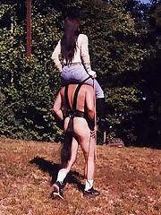 Male ponies ran
