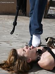 The bound hard slavegirl licked feet