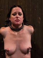 Tortured with clips and mummified in plastic.