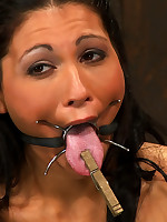 Submissive trapped in a vice and fucked with a strap-on