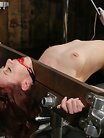 Girl-on-girl bondage and torment