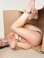 Topless brunette bound in a box