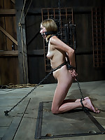 Eminence showed just about in our dungeon with this prospects that soreness would earn her something. She thought the obedience would be her choice.