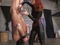 Dominatrix pains her bound male