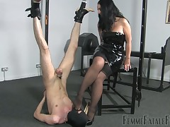 Scrawny submissive was hung plus made worshipping boot-lick plus hooves