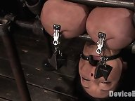 Huge tits, bound in metal, nipple tormented, helpless cumming.