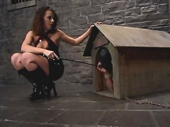 Penny uses her cheeky dominance to torture and torment a slave